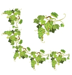 Set of Grapes frame vignette and repeated element vector image
