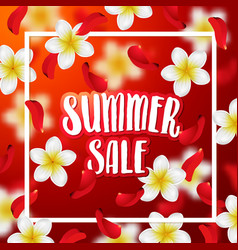 summer or spring background with tropical flowers vector image