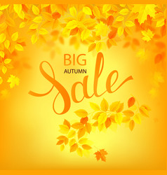 autumn sale poster with vector image