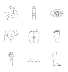 Human body icons set outline style vector image vector image