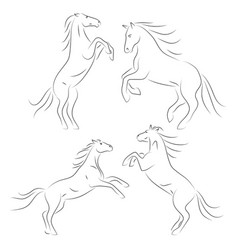 Beautiful black line horses on hind legs on white vector