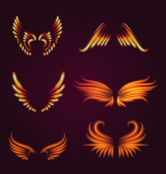 Bird fire wings fantasy feather burning fly vector