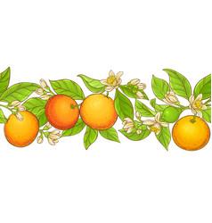 Grapefruit branch pattern vector