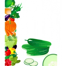 vegetables cucumber vector image