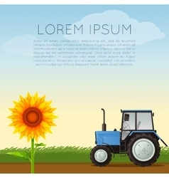 Agriculture banner with sunflower vector image