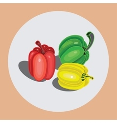 Bell peppers vector