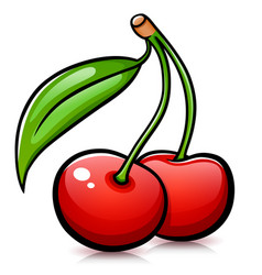 cherries isolated design drawing vector image