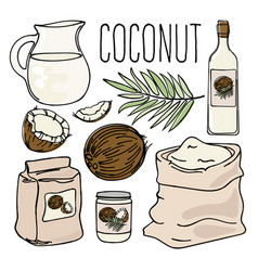 Coconut vegetarian paleo diet natural vector