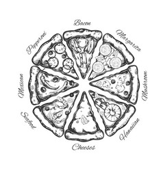Different types pizza slices 2 vector