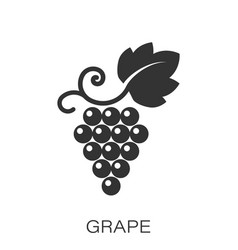 Grape fruits sign icon in flat style grapevine on vector