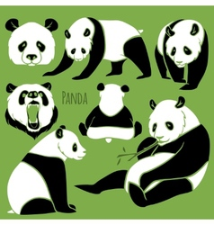 Set of Panda silhouettes set vector image