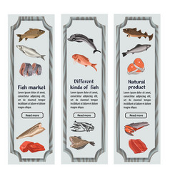 sketch colored seafood vertical banners vector image