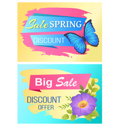 spring sale poster discount color butterfly flower vector image