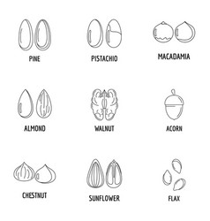 walnut oil icons set outline style vector image