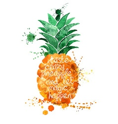 Watercolor of isolated pineapple fruit vector image vector image