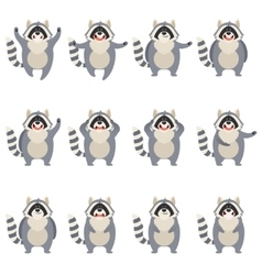 Set of flat racoon icons vector image