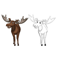 Animal outline for moose vector