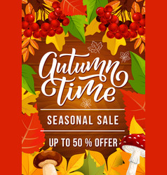 Autumn sale banner for fall season discount offer vector