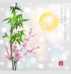 bamboo sun sakura in blossom vector image