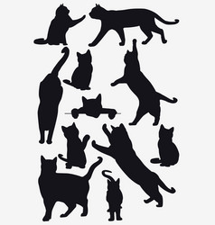 cats collection - isolated silhouette vector image
