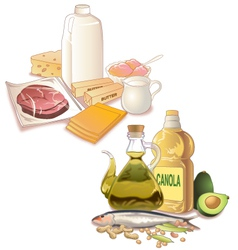 Food with fats vector