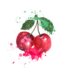 Two red cherries are splashed with watercolors on vector