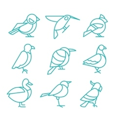 Bird Icons Thin Line Style vector image