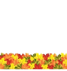Background autumn maple leaves vector