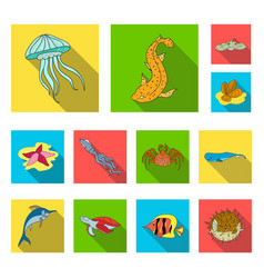 a variety of marine animals flat icons in set vector image
