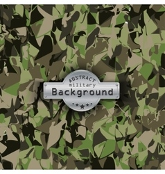 Camouflage military pattern background vector image