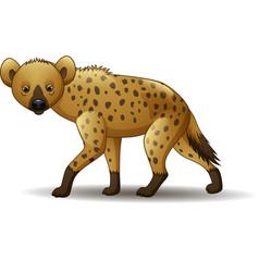 cartoon funny hyena walking isolated on white back vector image