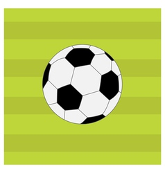 Football soccer ball on green grass field back vector