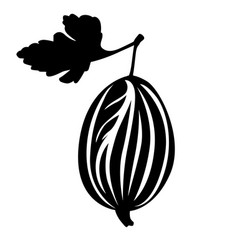 Gooseberry and leaf image vector