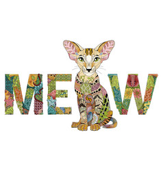 word meow with a drawing of a cat vector image