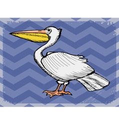vintage grunge background with pelican vector image vector image