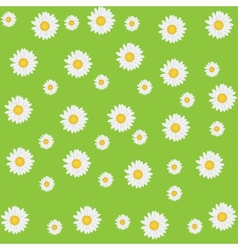 Beautiful seamless daisy background vector image