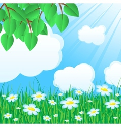 Blue background with grass and leaves vector