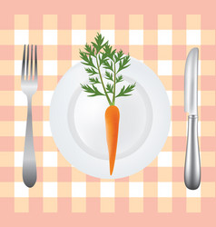 carrot plate vector image