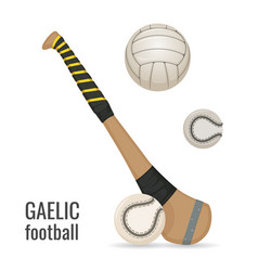 Gaelic football club and balls icon set irish vector