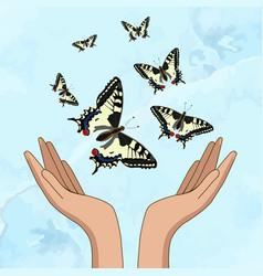 Hands release yellow beautiful butterflies on a vector