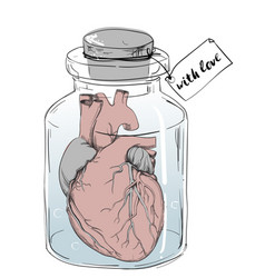 Heart - funny anatomy joke vector