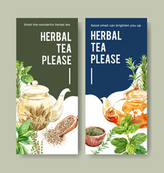 Herbal tea flyer design with rosemary thyme sage vector