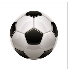 isolated soccer ball icon european football vector image