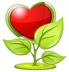 love plant vector image