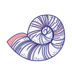 Sea snail icon vector