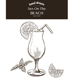 sex on the beach sketch vector image