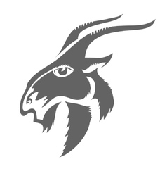 Head of Horned Goat vector image vector image