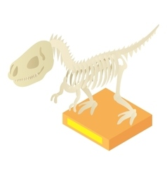 Dinosaur skeleton in museum icon cartoon style vector
