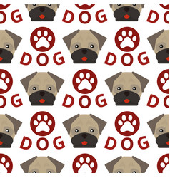 dog breed french bulldog adorable doggy face pet vector image