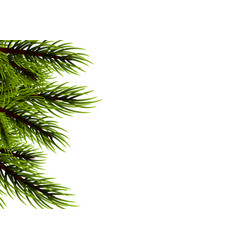 realistic isolated fir banner background vector image vector image